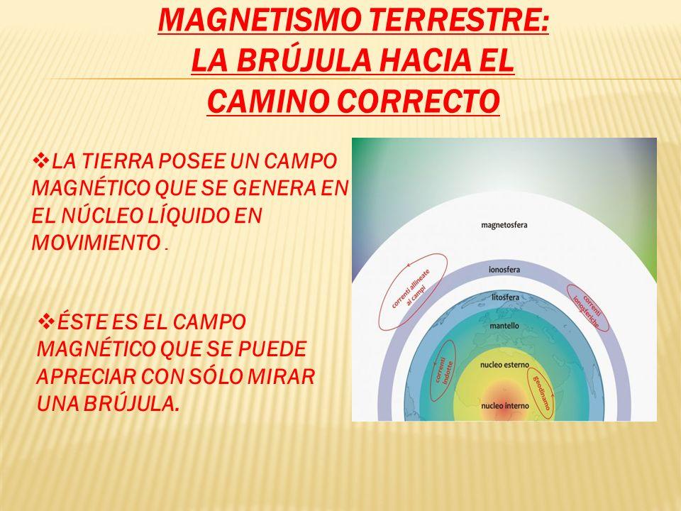 Magnetismo terrestre: la brújula hacia el camino correcto