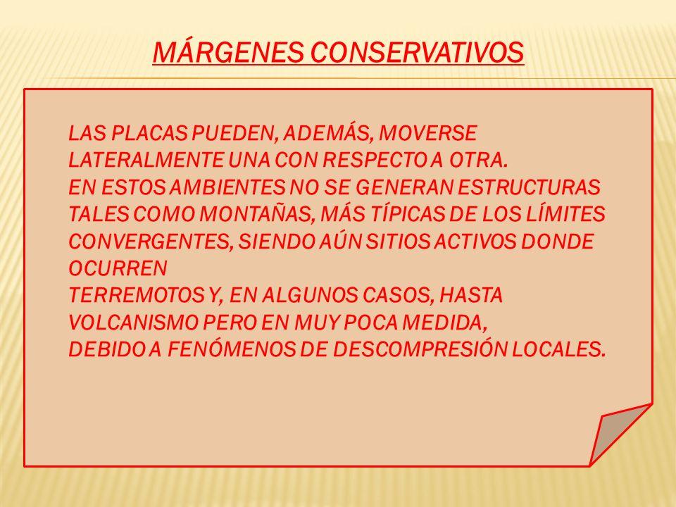 MÁRGENES CONSERVATIVOS