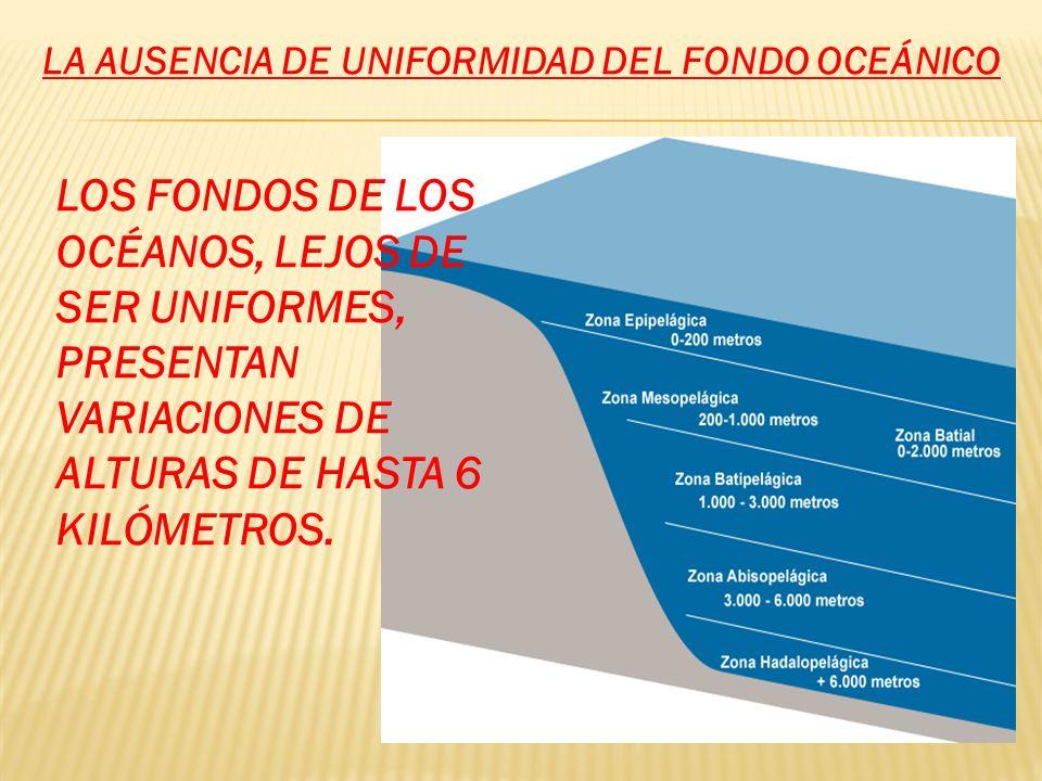 LA AUSENCIA DE UNIFORMIDAD DEL FONDO OCEÁNICO