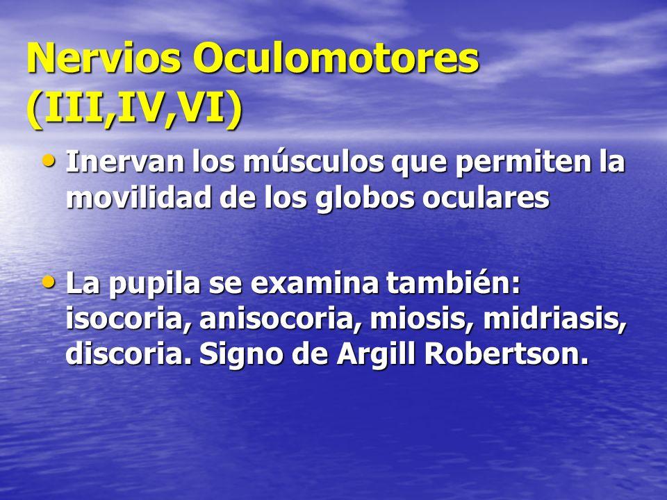 Nervios Oculomotores (III,IV,VI)