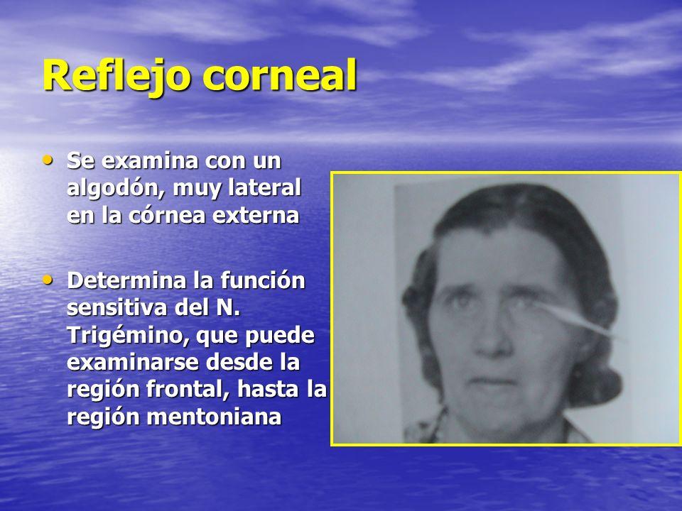 Reflejo corneal Se examina con un algodón, muy lateral en la córnea externa.