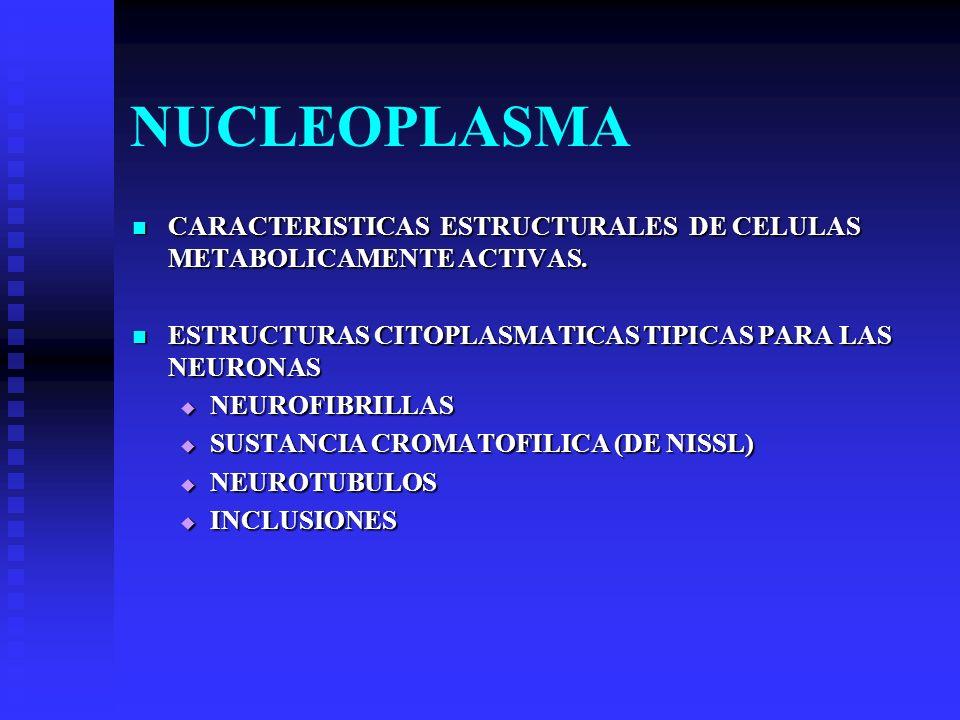 NUCLEOPLASMA CARACTERISTICAS ESTRUCTURALES DE CELULAS METABOLICAMENTE ACTIVAS. ESTRUCTURAS CITOPLASMATICAS TIPICAS PARA LAS NEURONAS.
