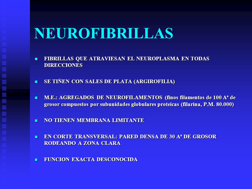 NEUROFIBRILLAS FIBRILLAS QUE ATRAVIESAN EL NEUROPLASMA EN TODAS DIRECCIONES. SE TIÑEN CON SALES DE PLATA (ARGIROFILIA)