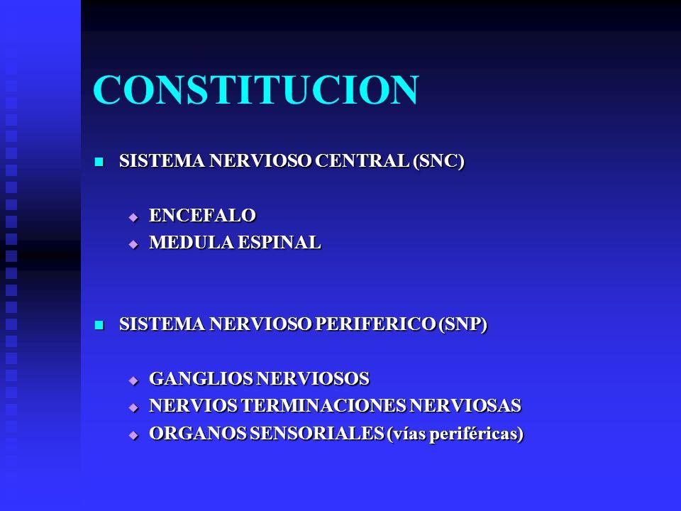 CONSTITUCION SISTEMA NERVIOSO CENTRAL (SNC) ENCEFALO MEDULA ESPINAL