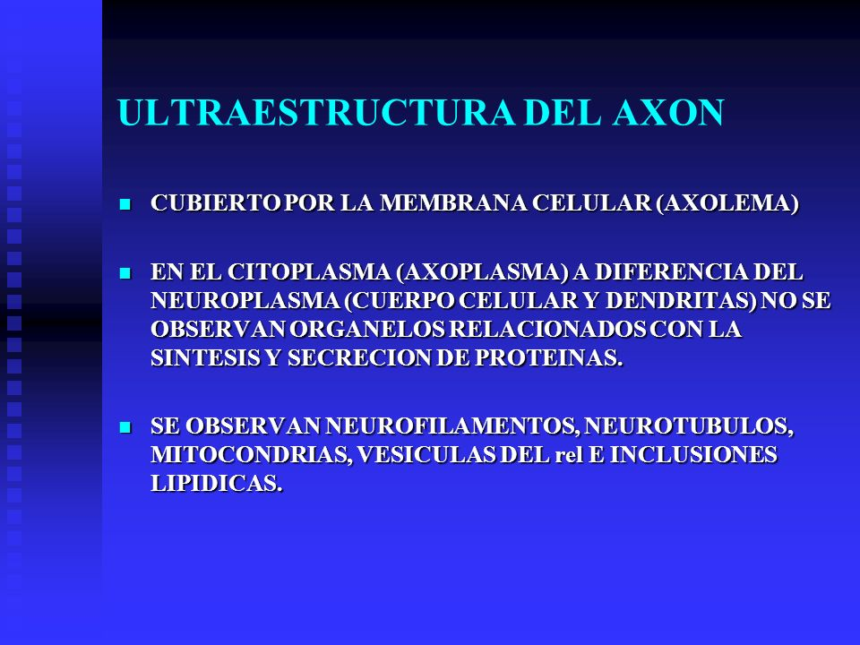ULTRAESTRUCTURA DEL AXON
