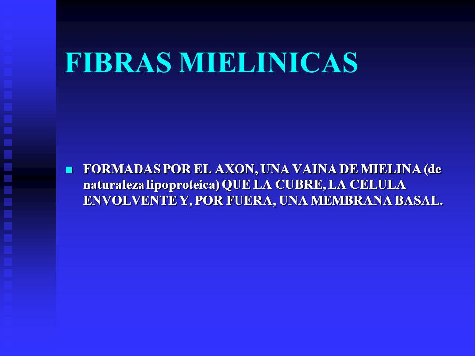 FIBRAS MIELINICAS