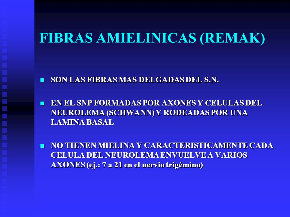 FIBRAS AMIELINICAS (REMAK)