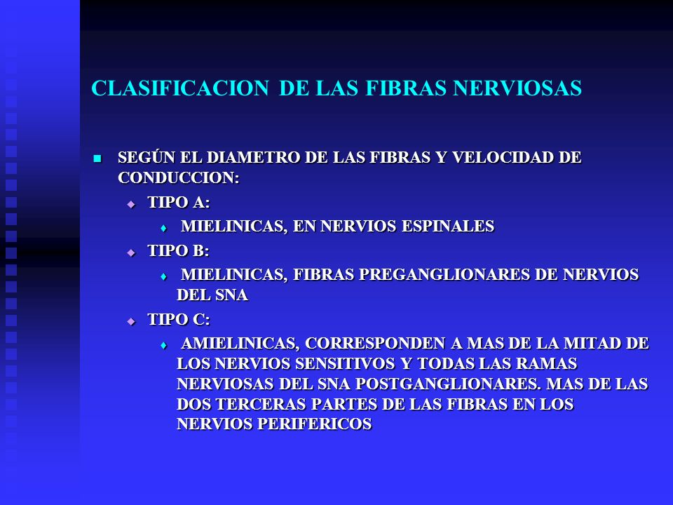 CLASIFICACION DE LAS FIBRAS NERVIOSAS