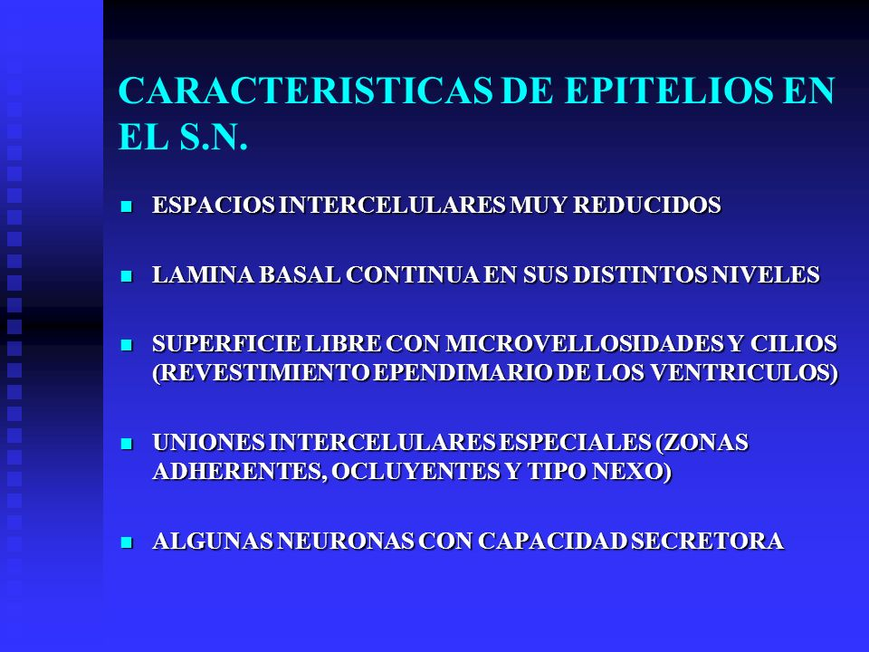 CARACTERISTICAS DE EPITELIOS EN EL S.N.
