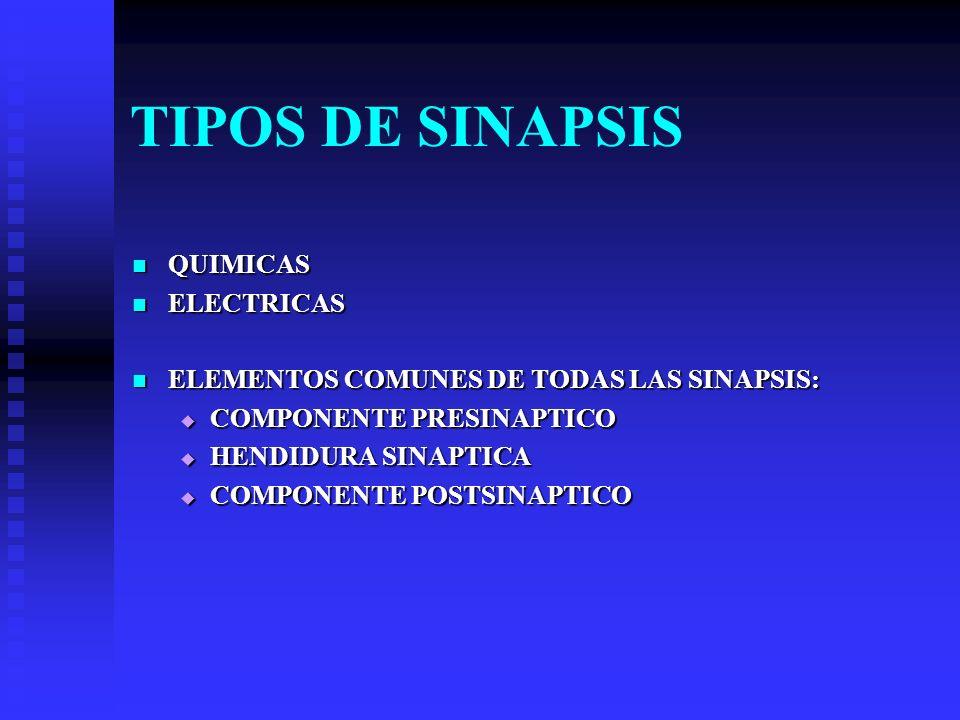 TIPOS DE SINAPSIS QUIMICAS ELECTRICAS
