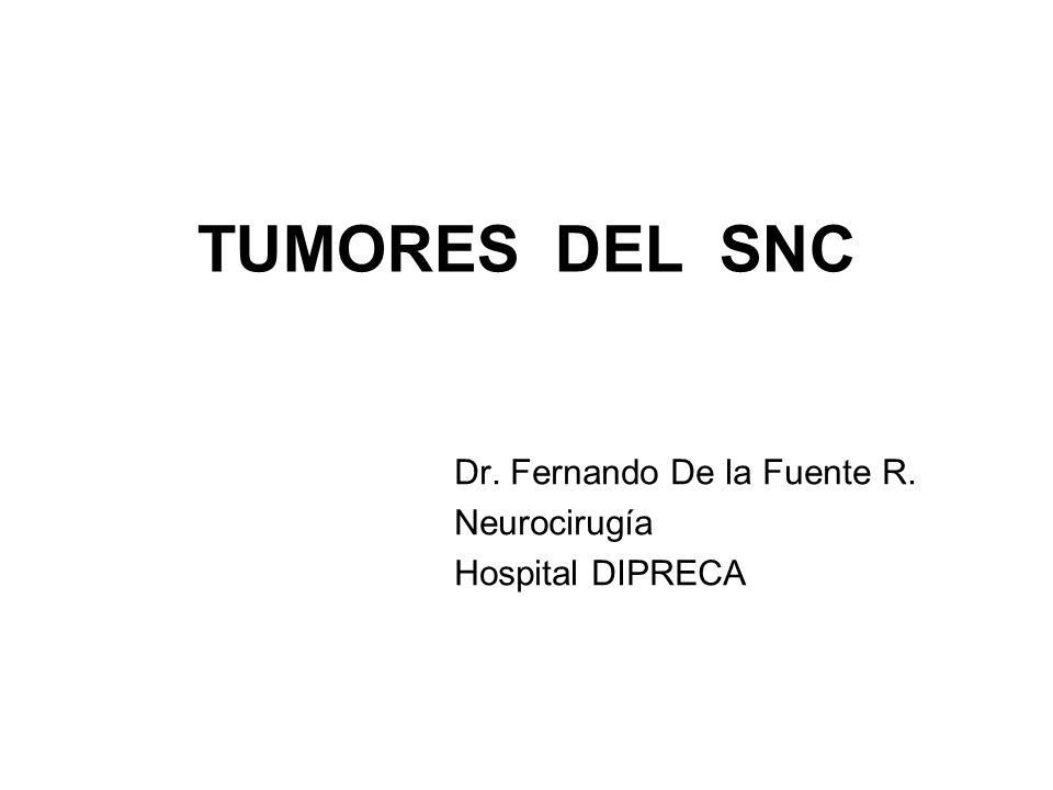 Dr. Fernando De la Fuente R. Neurocirugía Hospital DIPRECA