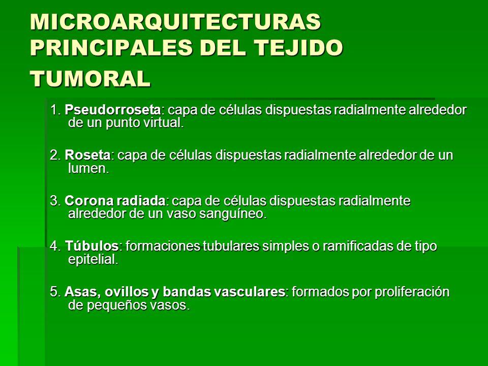 MICROARQUITECTURAS PRINCIPALES DEL TEJIDO TUMORAL