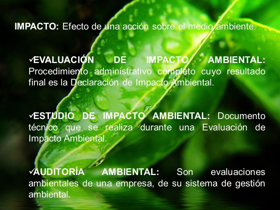 IMPACTO: Efecto de una acción sobre el medio ambiente.