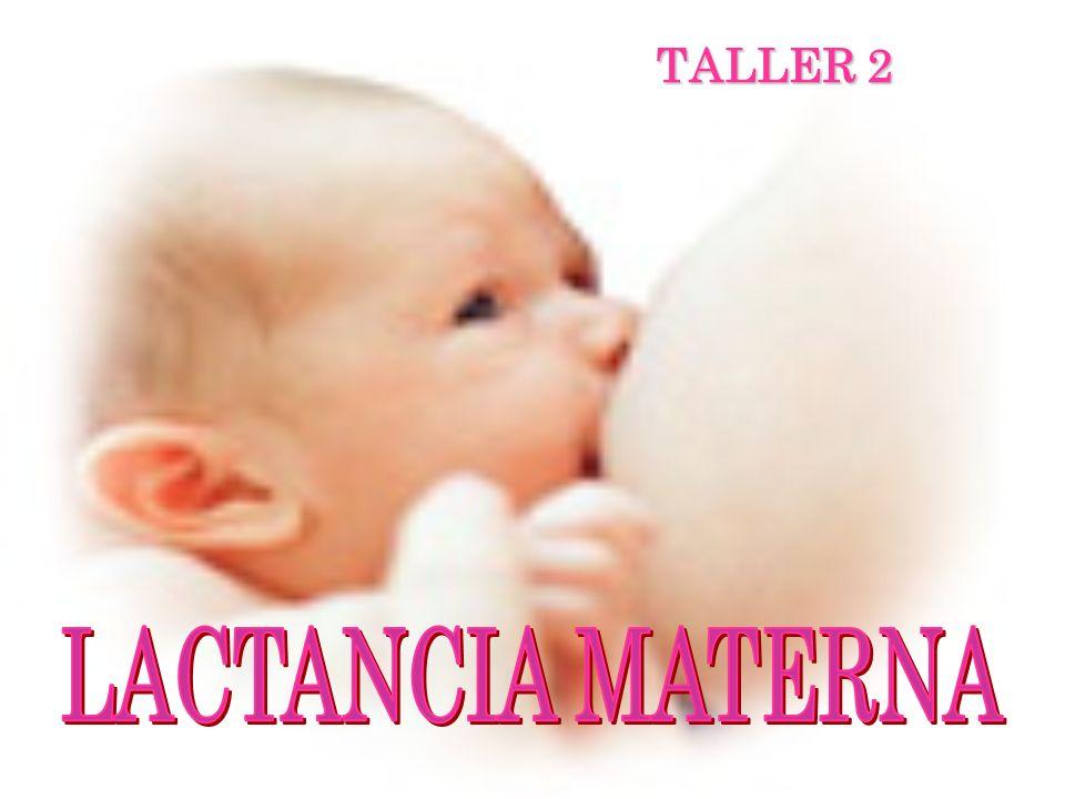 TALLER 2 LACTANCIA MATERNA