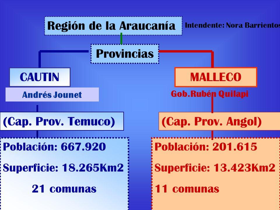 Región de la Araucanía Provincias CAUTIN MALLECO (Cap. Prov. Temuco)