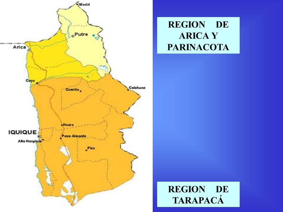 REGION DE ARICA Y PARINACOTA