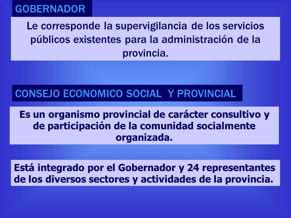 CONSEJO ECONOMICO SOCIAL Y PROVINCIAL