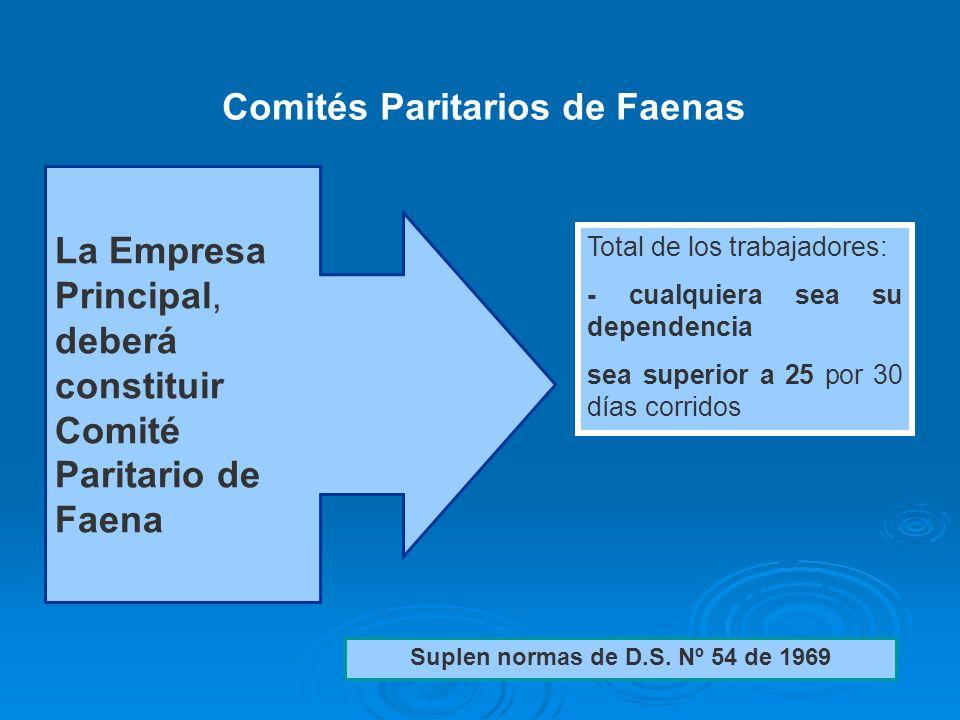 Comités Paritarios de Faenas Suplen normas de D.S. Nº 54 de 1969
