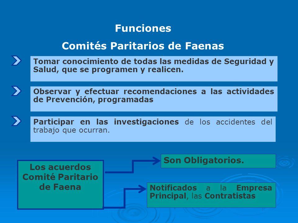Comités Paritarios de Faenas Los acuerdos Comité Paritario de Faena