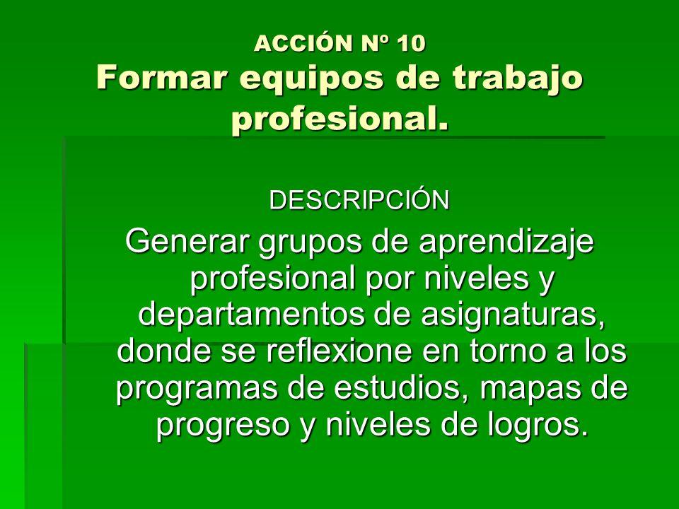 ACCIÓN Nº 10 Formar equipos de trabajo profesional.