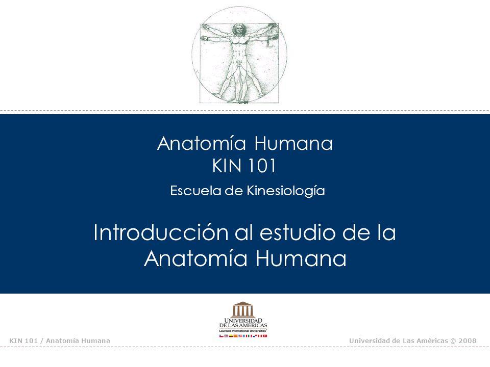 Anatomía Humana KIN 101 Escuela de Kinesiología