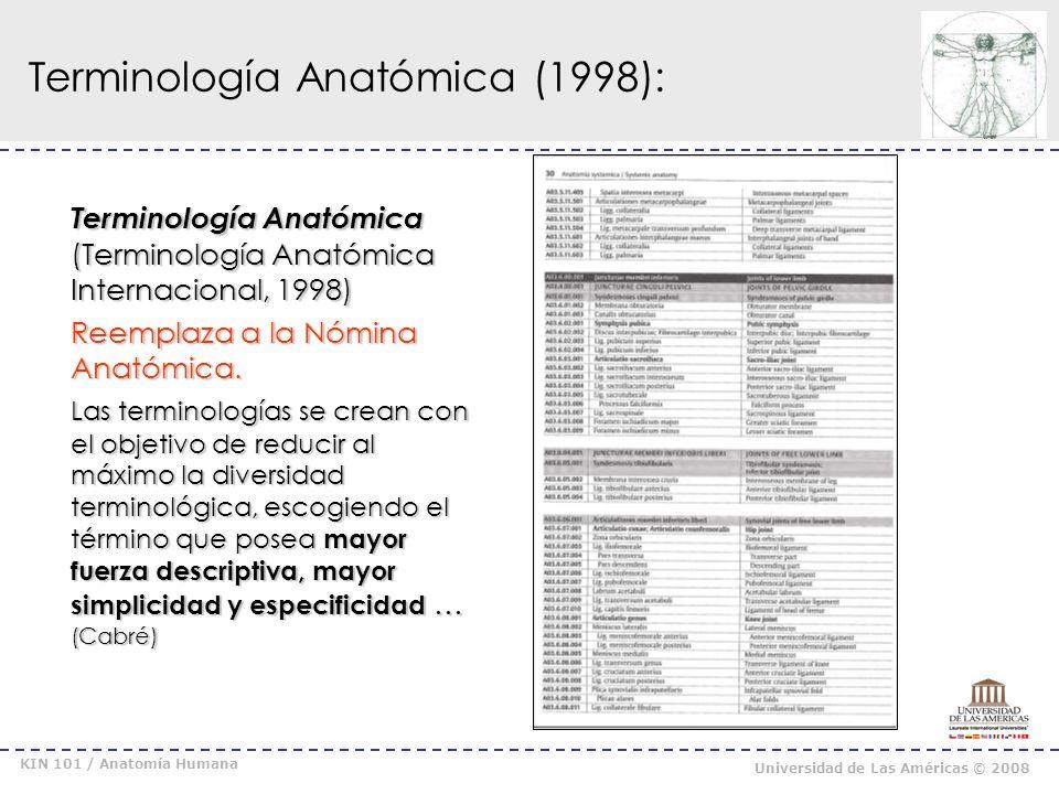 Terminología Anatómica (1998):