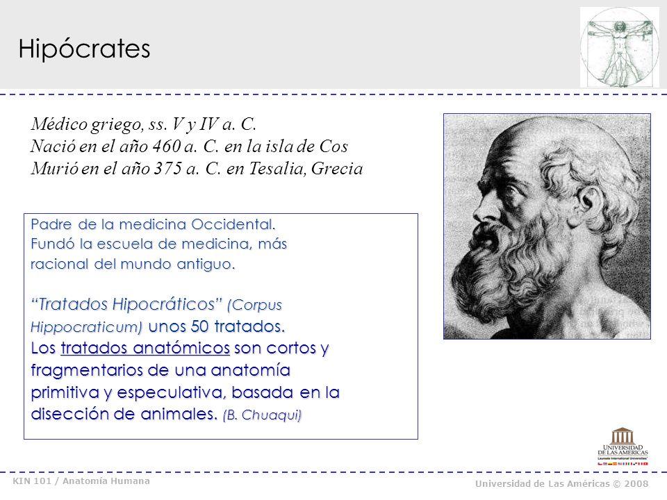Hipócrates Médico griego, ss. V y IV a. C.