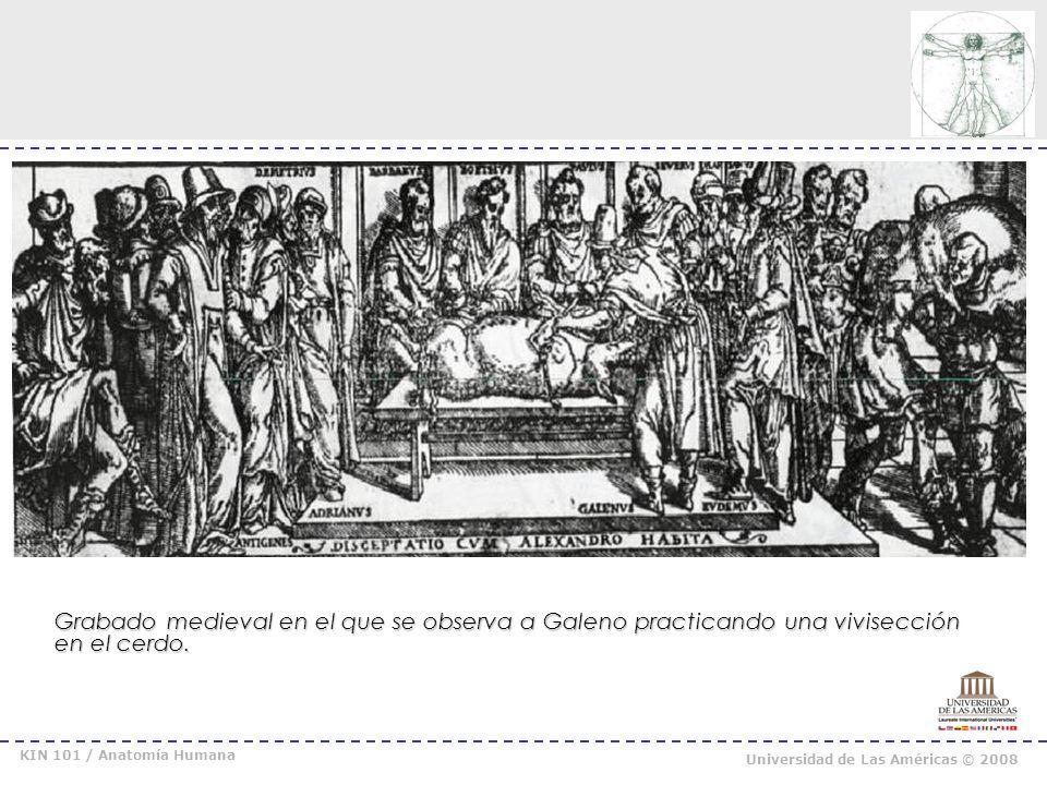 Grabado medieval en el que se observa a Galeno practicando una vivisección en el cerdo.