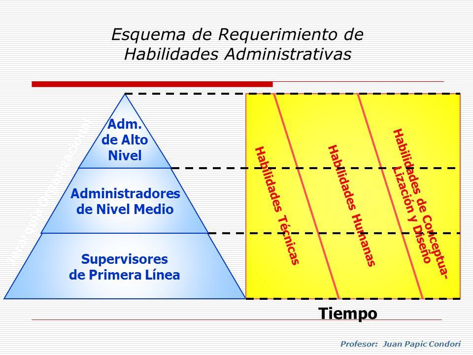 Esquema de Requerimiento de Habilidades Administrativas