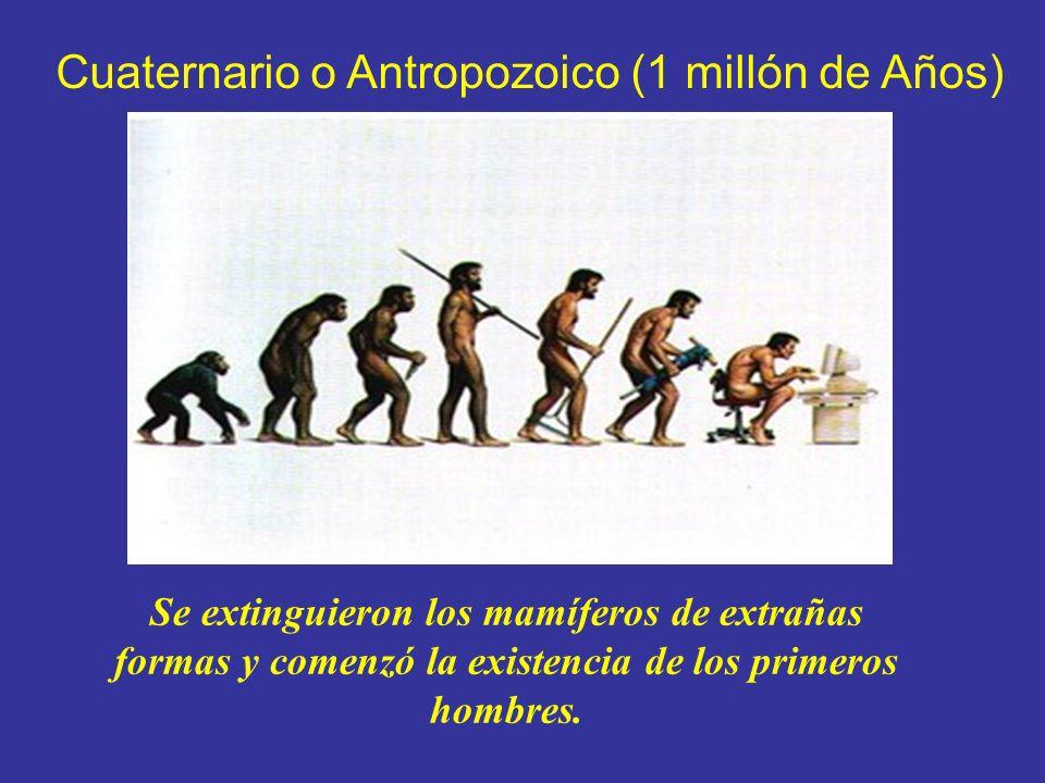 Cuaternario o Antropozoico (1 millón de Años)