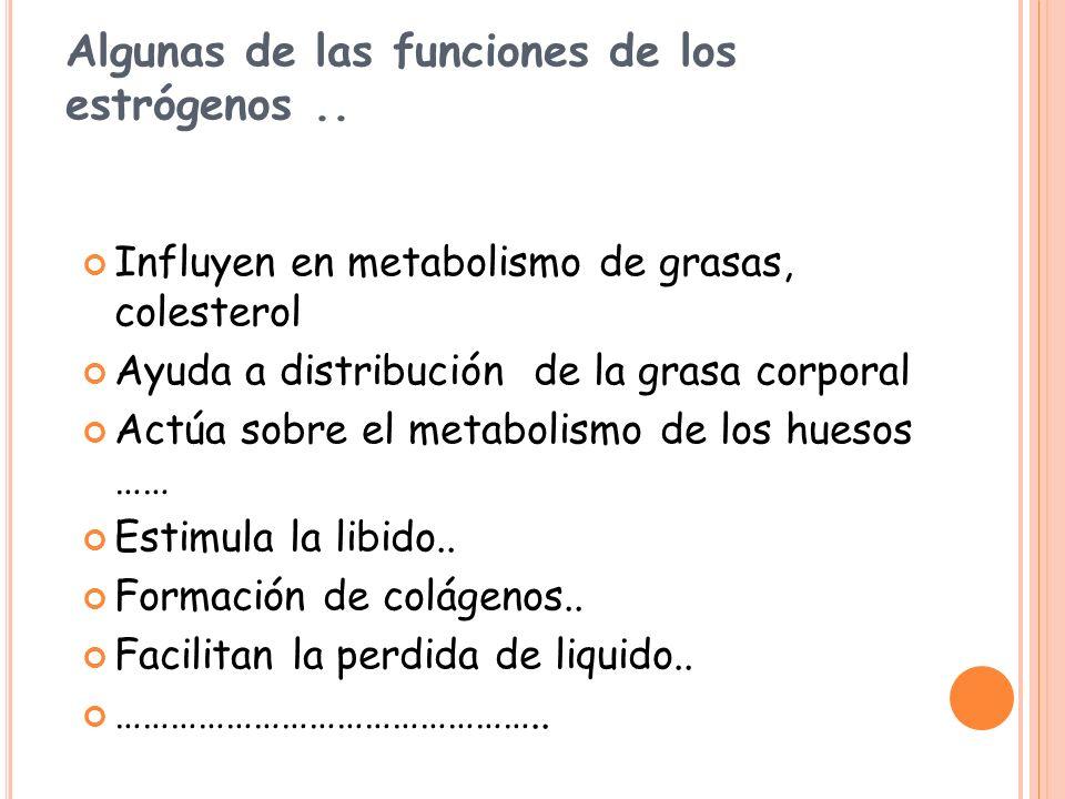 Algunas de las funciones de los estrógenos ..
