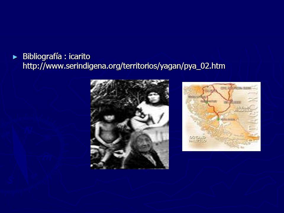 Bibliografía : icarito http://www. serindigena