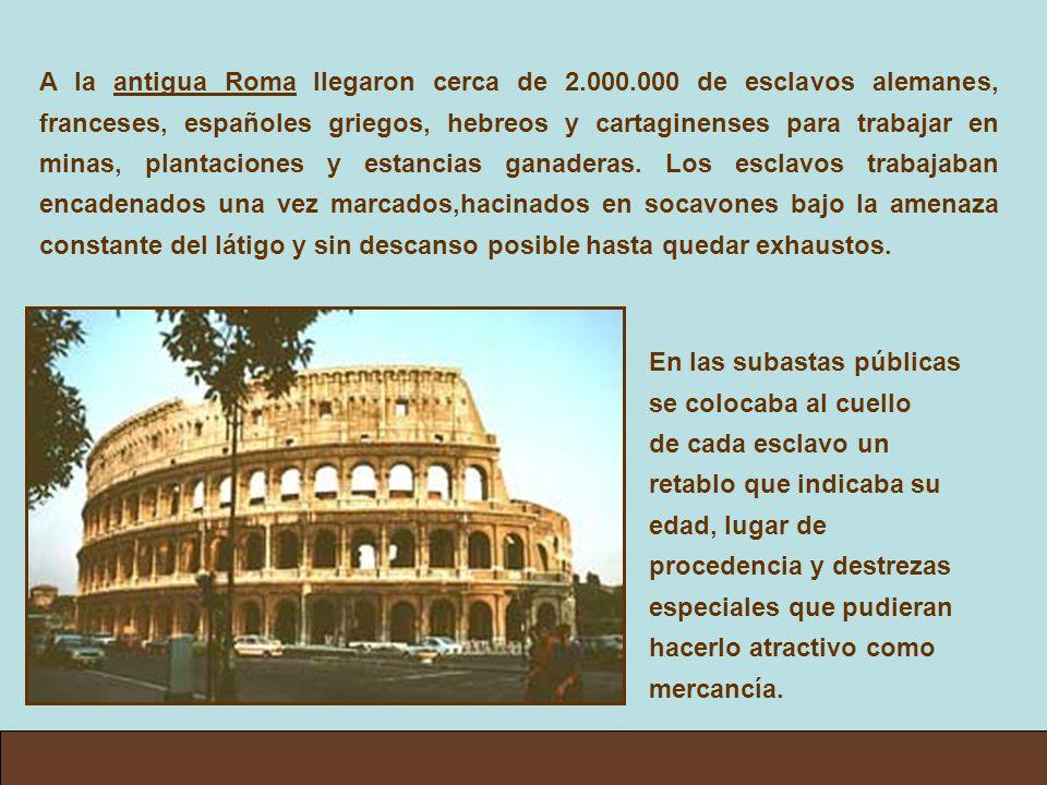A la antigua Roma llegaron cerca de 2. 000