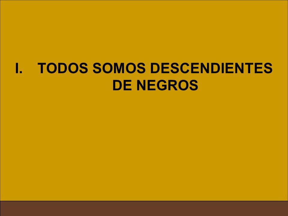 TODOS SOMOS DESCENDIENTES DE NEGROS
