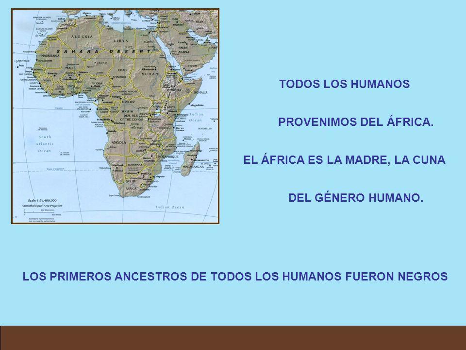 TODOS LOS HUMANOS PROVENIMOS DEL ÁFRICA.