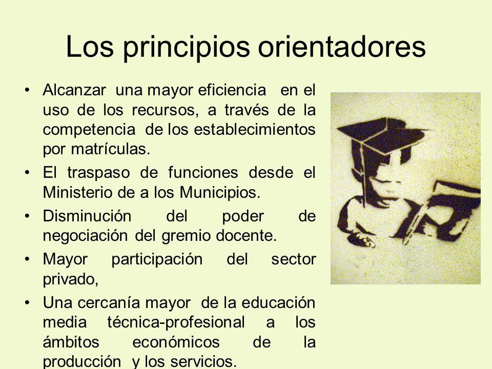 Los principios orientadores