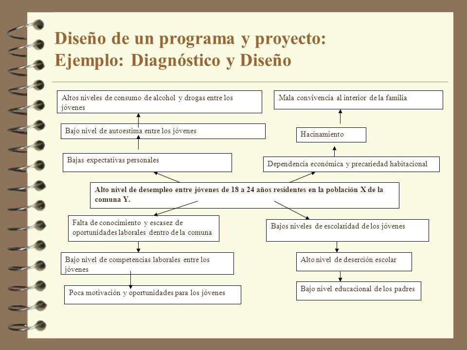 Diseño de un programa y proyecto: Ejemplo: Diagnóstico y Diseño