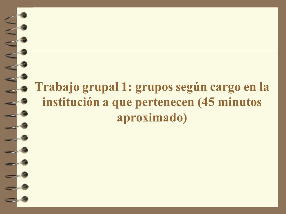 Trabajo grupal 1: grupos según cargo en la institución a que pertenecen (45 minutos aproximado)