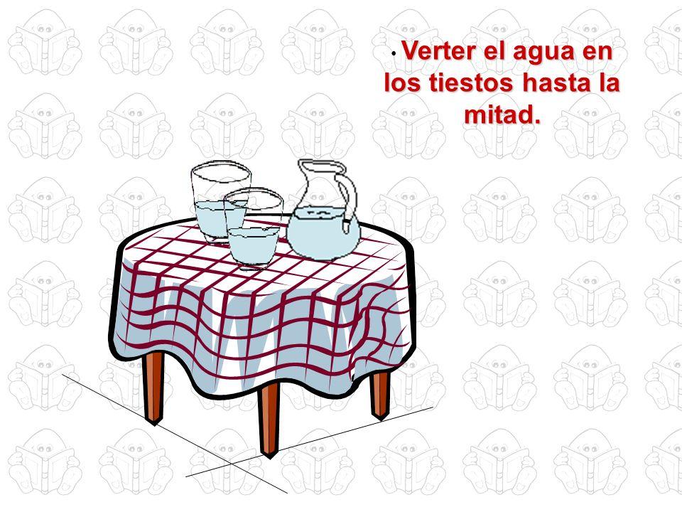 Verter el agua en los tiestos hasta la mitad.