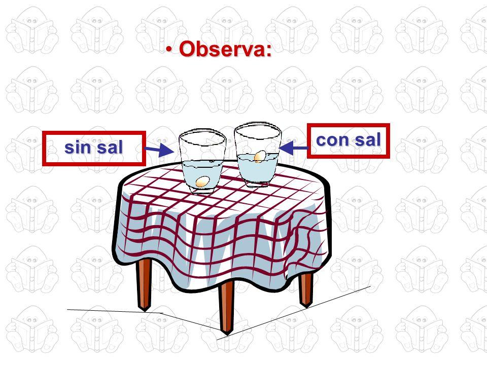 Observa: con sal sin sal