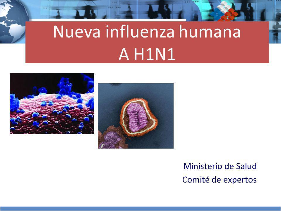 Nueva influenza humana A H1N1
