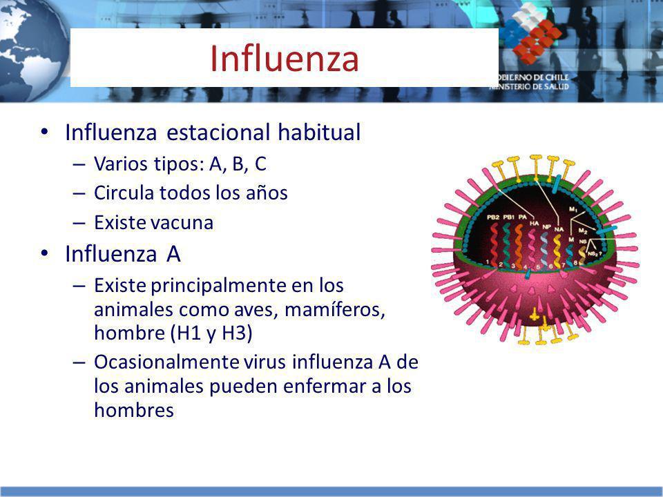 Influenza Influenza estacional habitual Influenza A