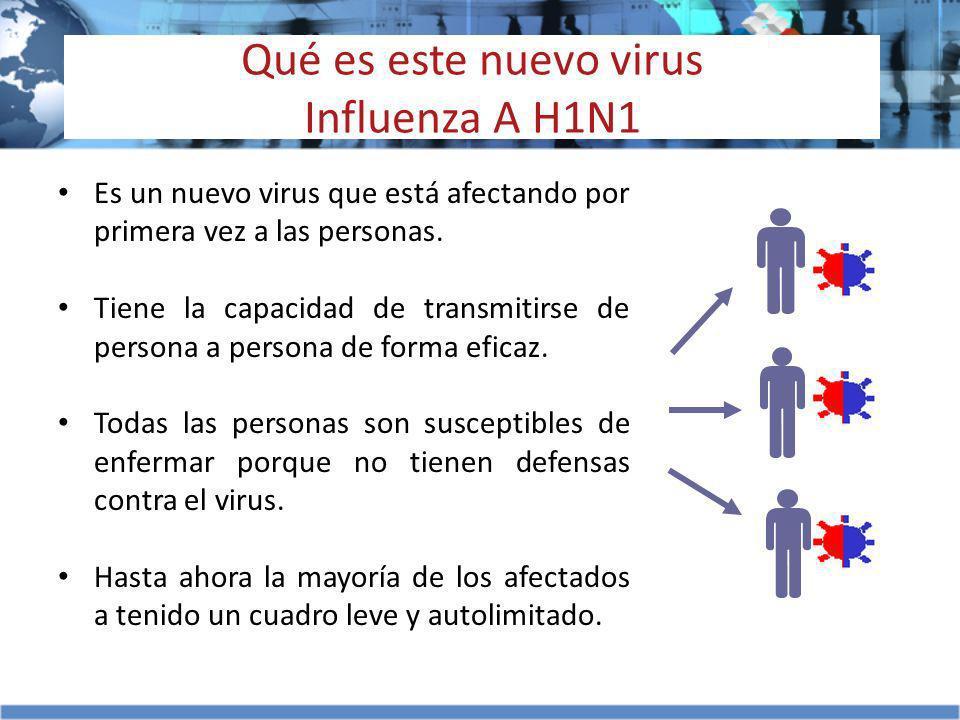 Qué es este nuevo virus Influenza A H1N1