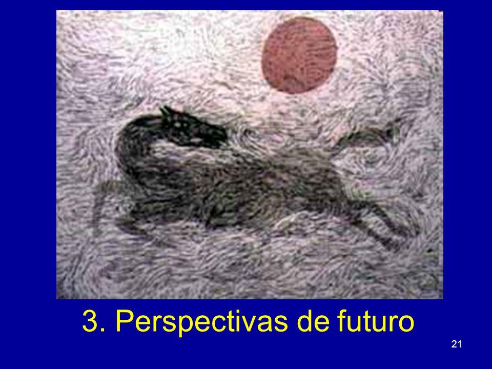 3. Perspectivas de futuro