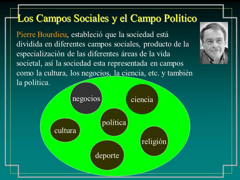 Los Campos Sociales y el Campo Político