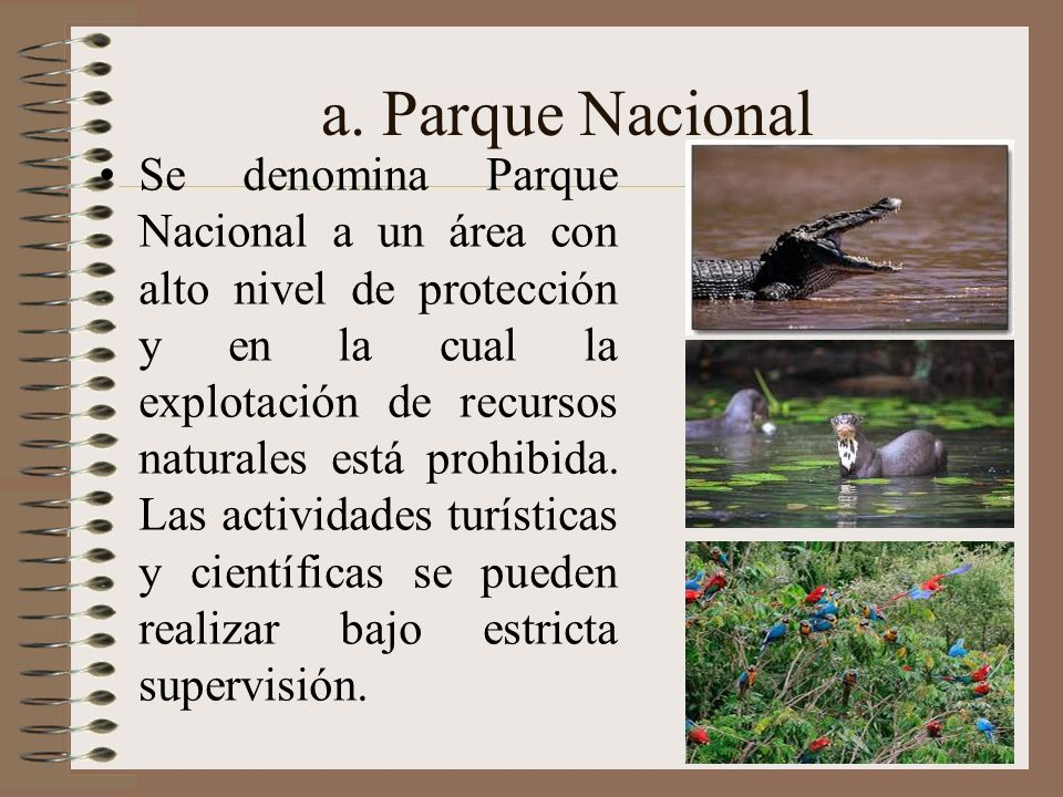 a. Parque Nacional