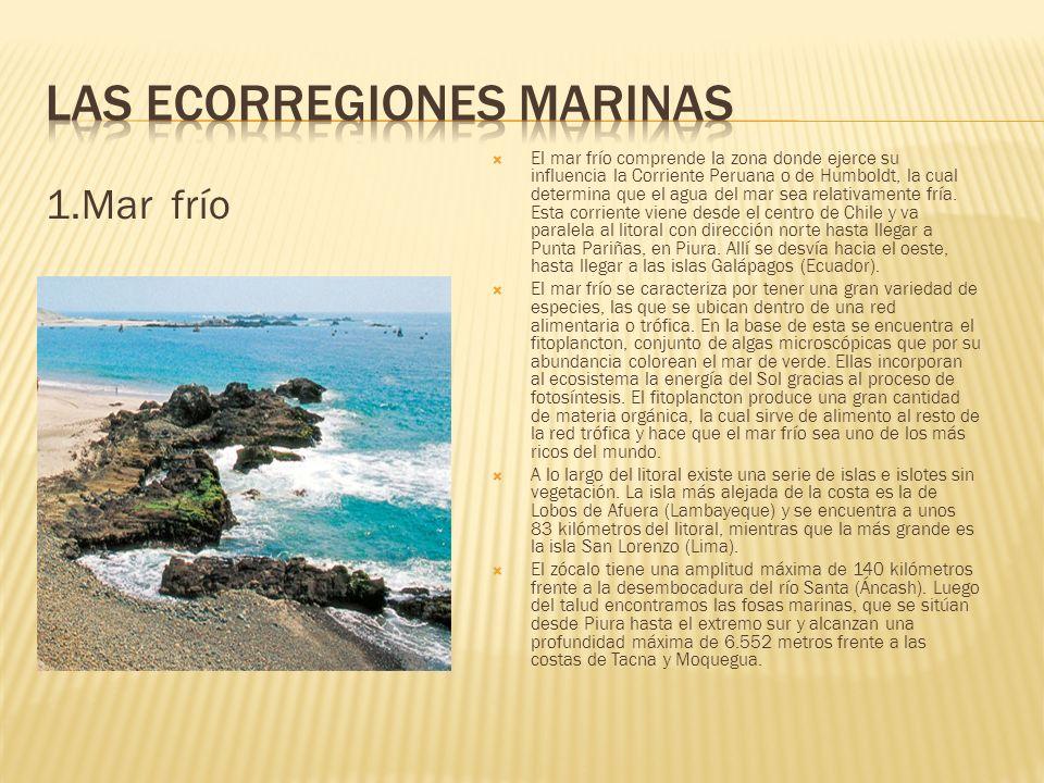 Las Ecorregiones marinas