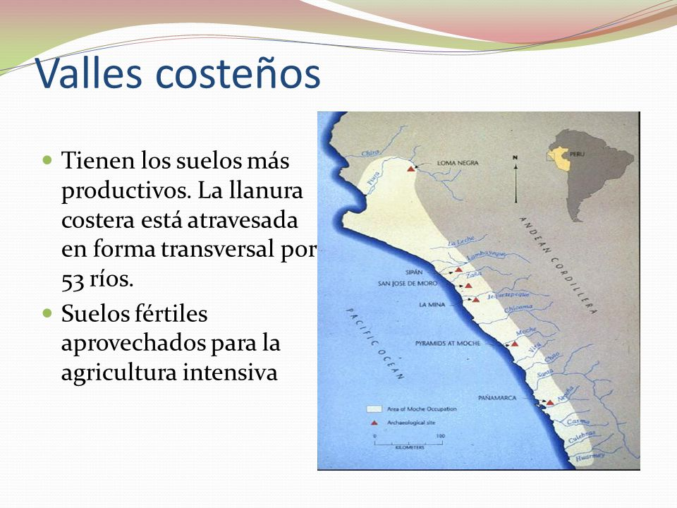 Valles costeños Tienen los suelos más productivos. La llanura costera está atravesada en forma transversal por 53 ríos.