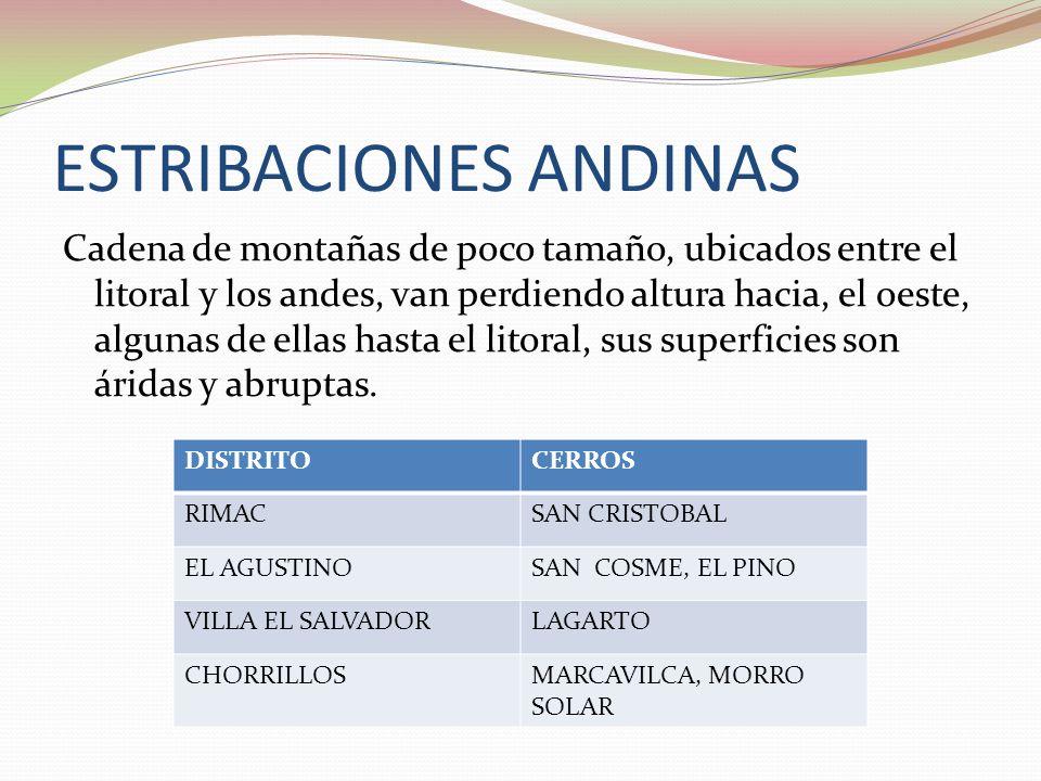 ESTRIBACIONES ANDINAS