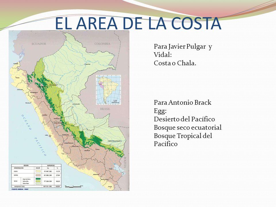 EL AREA DE LA COSTA Para Javier Pulgar y Vidal: Costa o Chala.